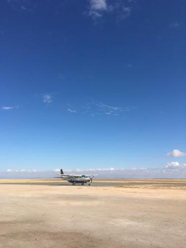 ひろーい草原が空港