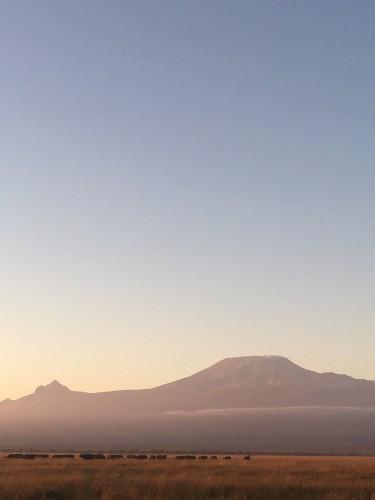 朝陽を浴びたキリマンジャロ