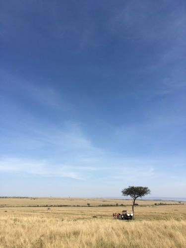 ひろいマサイマラ国立公園