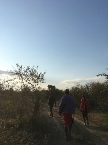 朝のWailing Safari