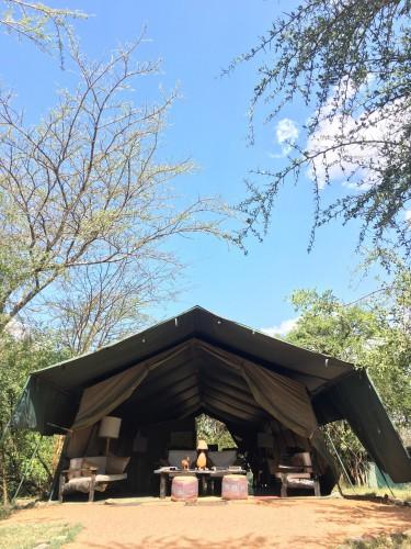 キャンプ施設のロビーとレストランテント